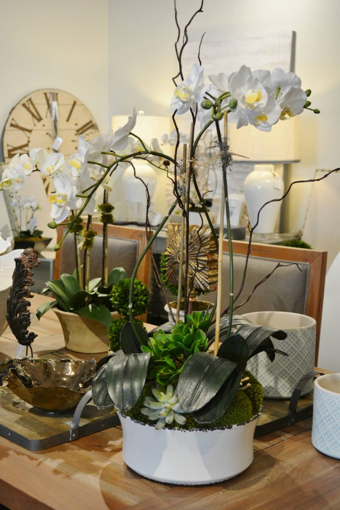 orchid10edit