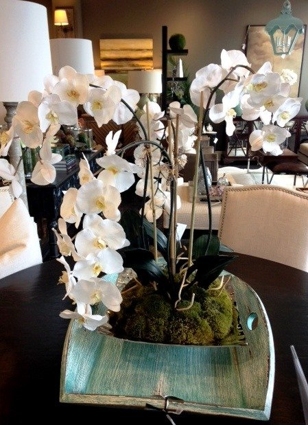 Whats New Wednesday Spring Orchids Heather Scott Home Design