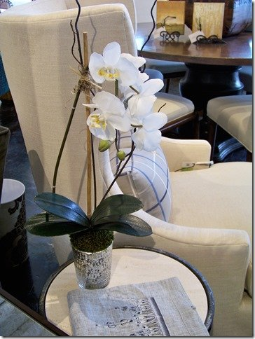 orchid in mercury glass