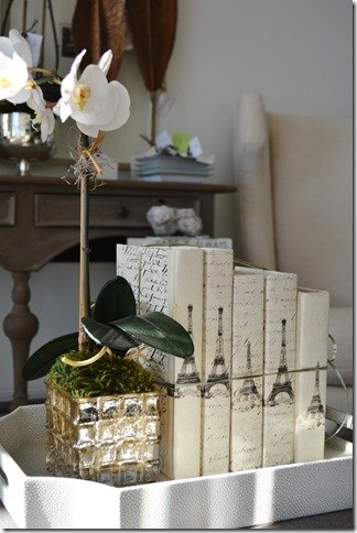 Paris Books